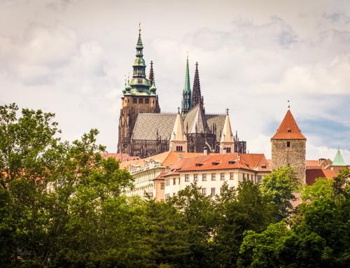 Prague Castle | 3